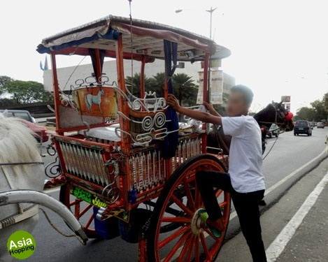 manila horse carriage costs and scams