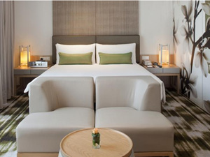 preview Crowne Plaza Hotel Changi Airport Eastern Singapore deluxe room