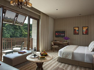 preview Resorts World Sentosa Equarius Hotel Singapore Deluxe Room